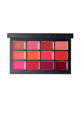 COLOR MASTER LIP PALETTE