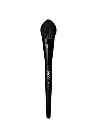 PRO TAPERED CHEEK BRUSH 213